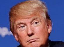 2020 Presidential Race